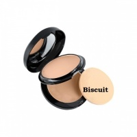 Technic Colour Fix 2 in 1 Pressed Powder and Cream Foundation 22 g